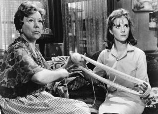 Třpyt v trávě (1961)