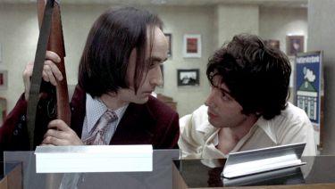 Psí odpoledne (1975)