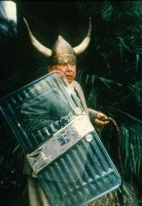 Pan účetní opět zasahuje (1999)