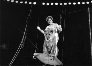 Cirkus v cirkuse (1975)