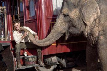 Voda pro slony (2011)