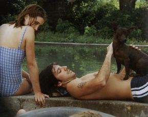 Bažina (2001)