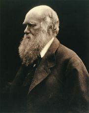 Darwin (2009) [TV film]