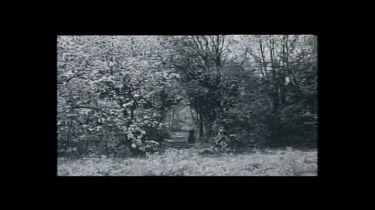 Tajemství Viléma Storitze (1967) [TV film]