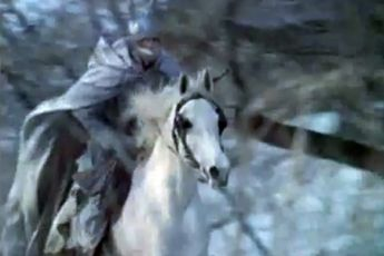 Divoký lov krále Stacha (1979)
