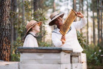 Tajný život včel (2008)