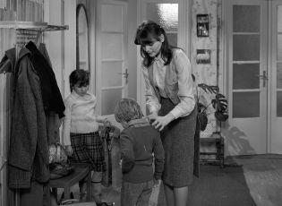 Jak jsem se znovu zamiloval do své ženy (1980) [TV epizoda]