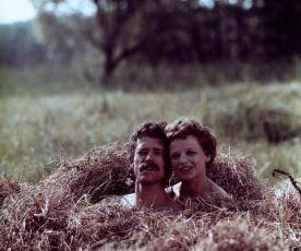 Případ beze svědků (1977)