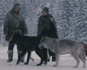 The Maiden and the Wolves (2008)