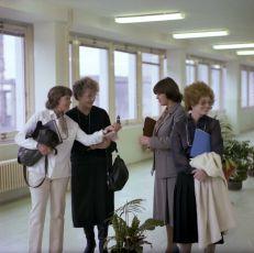 Evo, vdej se! (1983)