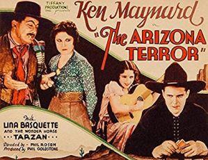 The Arizona Terror (1931)