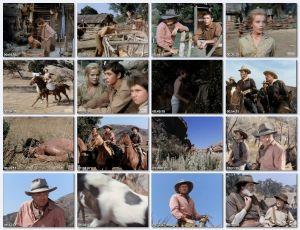 Divoch Sam (1963)
