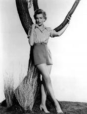 Odtud až na věčnost (1953)