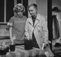 Po přízni řízni (1974) [TV epizoda]