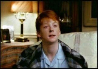 Gingerbread (1993) [TV seriál]