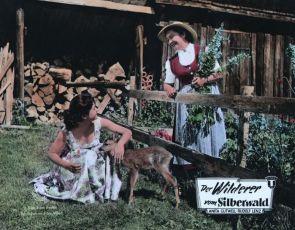 Der Wilderer vom Silberwald (1957)
