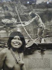 Tajemství amazonských pralesů (1938)