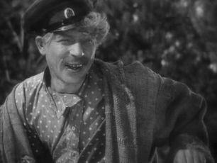 Tichý Don (1931)