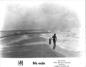 Bílá mušle (1964)