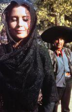 Grošák (1966)