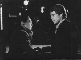 Řidič (1978)