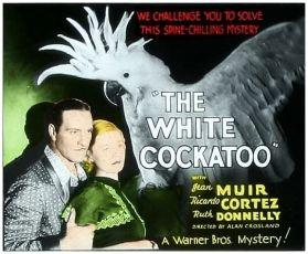 The White Cockatoo (1935)