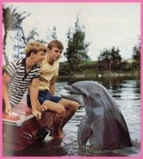 Můj přítel delfín (1964) [TV seriál]