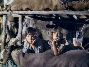 Hnízdo (1970)
