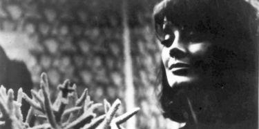 Panna zázračnica (1966)