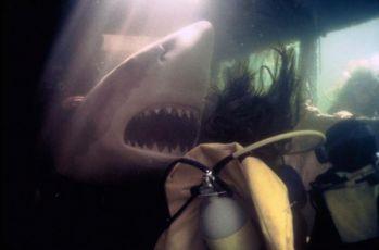 Žralok útočí 2 (2000)