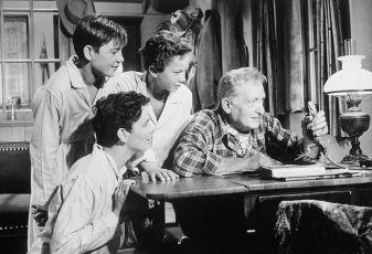 13 kleine Esel und der Sonnenhof (1958)