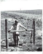 Broken Fences (2008)