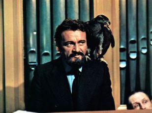 Modrovous (1972)