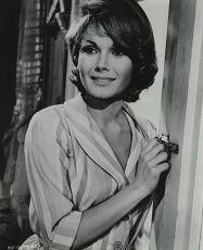 Líbej mne, hlupáčku (1964)