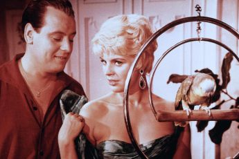 Der lachende Vagabund (1958)