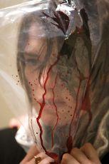 Střepy v hlavě (2008)