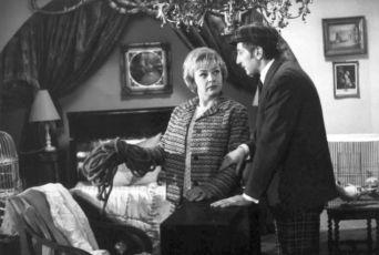 Rakev ve snu viděti (1968)