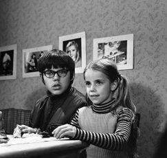 Kamarádi (1969) [TV seriál]