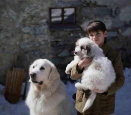 Bella a Sebastian 3: Přátelé navždy (2017)