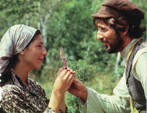 Šumař na střeše (1971)