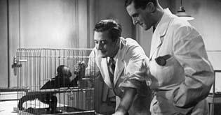 Lékařem z vášně (1936)
