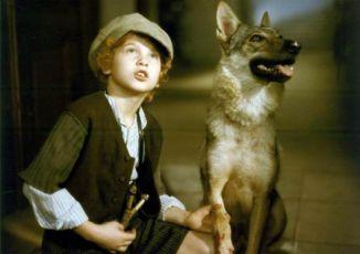 Pehavý Max a strašidlá (1987)