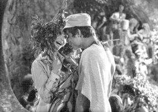 Setkání v červenci (1978)