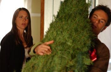 Přítel pod stromečkem (2004) [TV film]