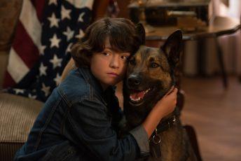 Hrdina Max 2: Chlupatý bodyguard (2017)