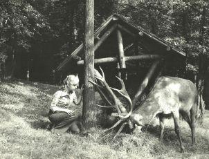 Dievča z jazera (1978)