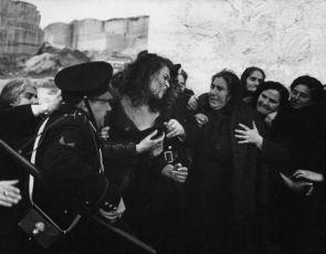 Vlčice (1953)