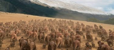 Putování s dinosaury (2013)