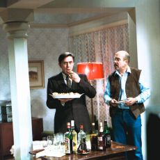 V podstatě jsme normální (1981)