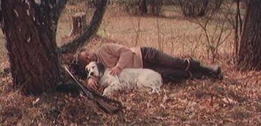 Bílý Bim, černé ucho (1977)